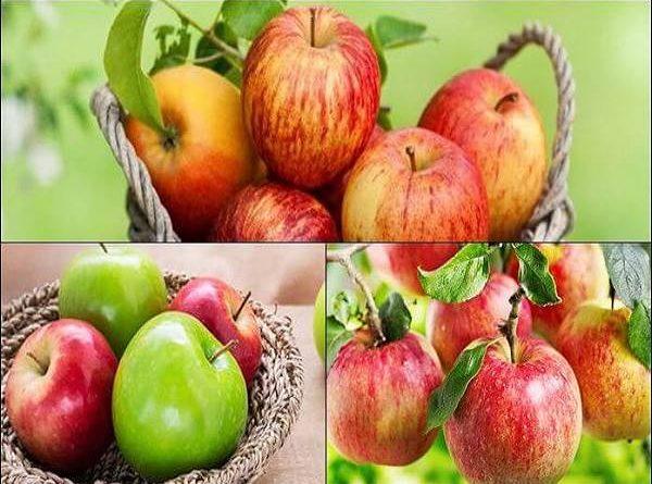 Mơ thấy quả táo có ý nghĩa gì và con số may mắn