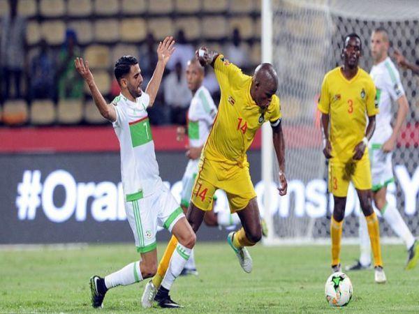 Soi kèo Zimbabwe vs Algeria, 20h00 ngày 16/11 - CAN